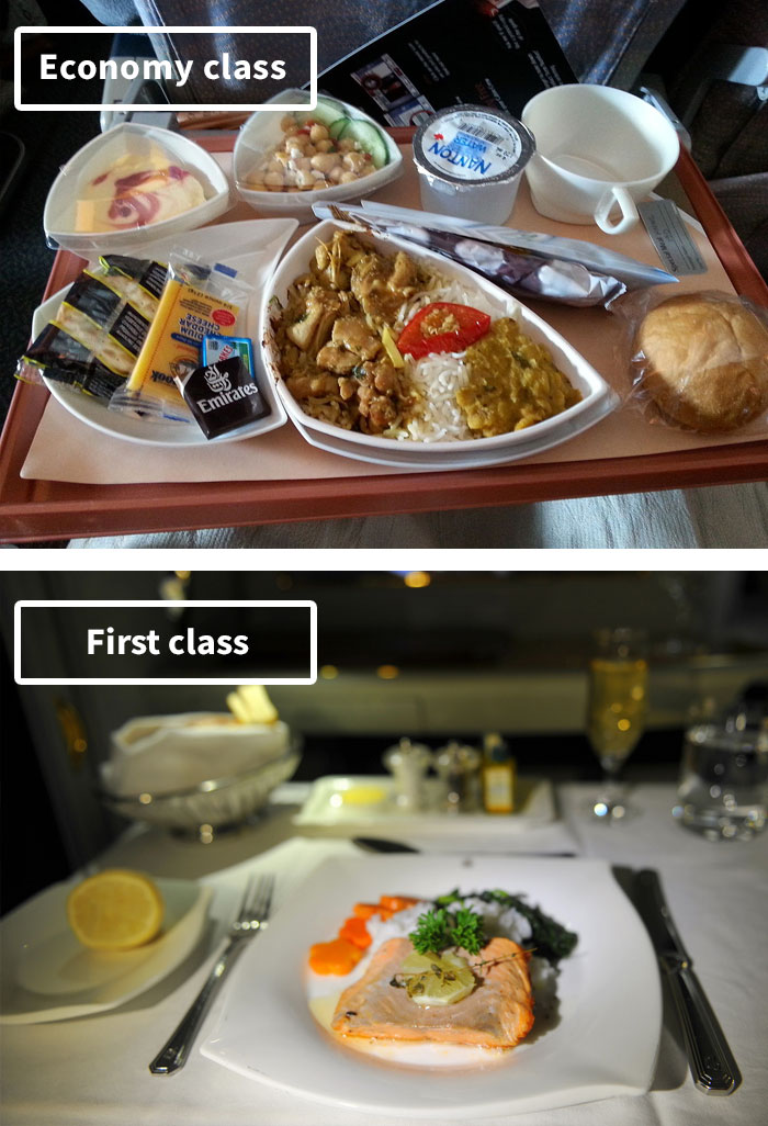 Airline Food Comparison Economy Vs First Class Crew Daily
